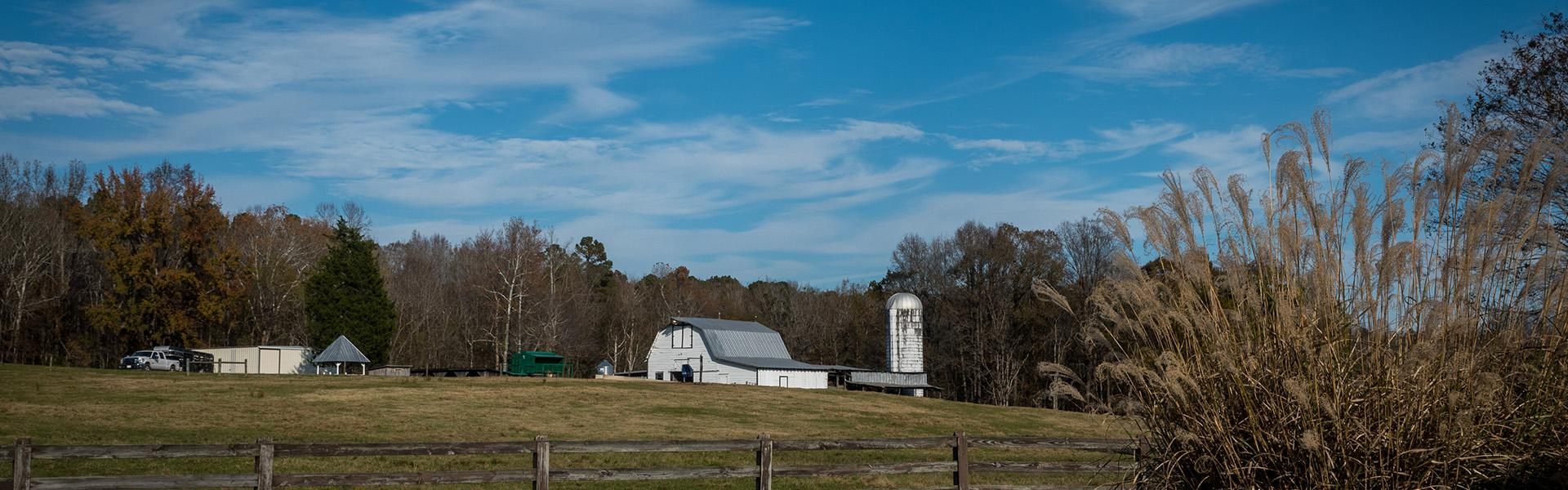 Farm Insurance in Asheville, Gastonia, Marion, Morganton, Old Fort, and Spruce Pine, NC